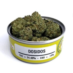Space Monkey Meds Dosidos