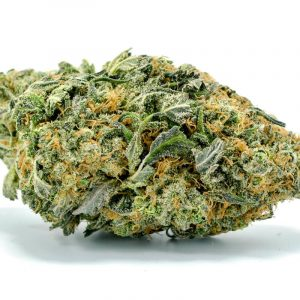 Buy northern lights strain