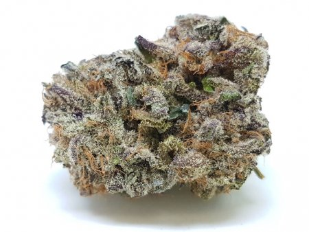 Buy Purple Crack Strain.