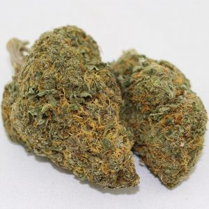 Buy UK Cheese marijuana online